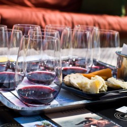 Wine Tasting 101: A Guided Tour of Wine Tasting