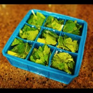 Lemon & Mint Ice Cubes