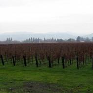 Napa Wineries Part II